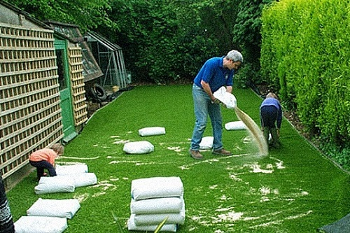 Fake Grass For Dogs The Complete Guide For Your Pet